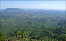 Usambara Forest Reserve