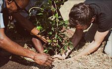 Planting a tree after a Kilimanjaro climb