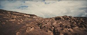 Ngorongoro Conservation Area - Crater Highlands