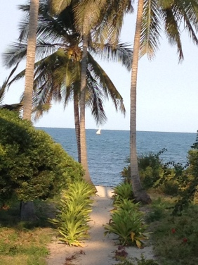 View from the porch! Pangani. Boma Africa