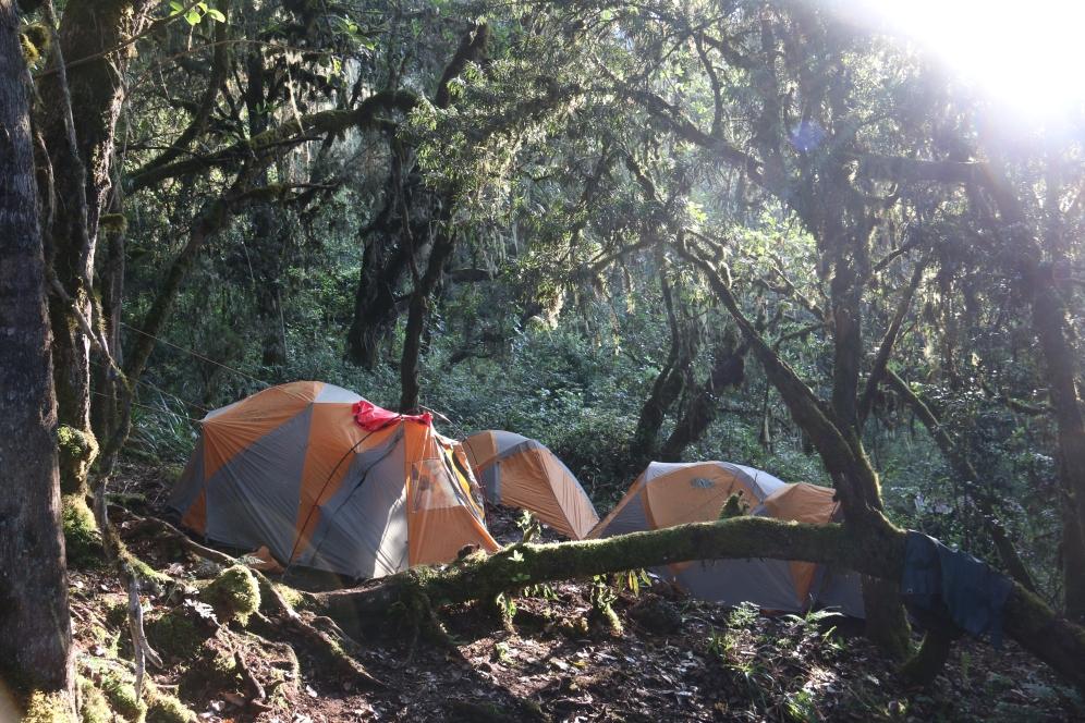 kilimanjaro- jgramlich- 2016- picture- boma africa